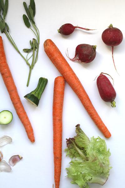 VegetableStock2_6