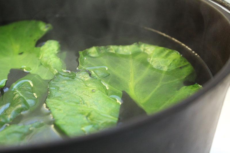 Bitter-Greens-3